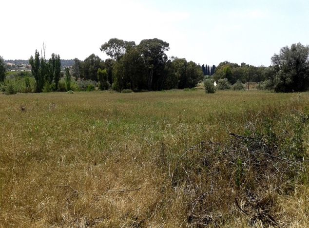 Land for sale in Nicosia 2987